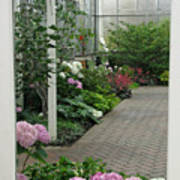 Blooming Conservatory Art Print
