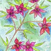 Blooming Flowers Art Print