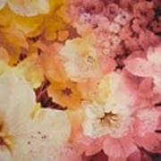 Blooms-of-summer Art Print