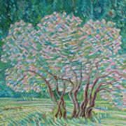 Bloomy Trees Art Print