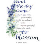Blossom I Print by Judy Dodds
