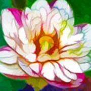 Blossom Lotus Flower Art Print