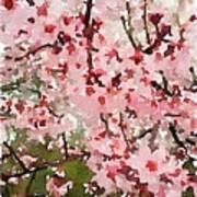 Blossom Trail Art Print