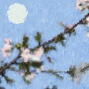 Blossoms In Moonlight Art Print