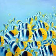 Blue And Yellow Fish Art Print