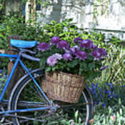 Blue Bike Art Print by Cheri Randolph