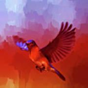 Blue Bird 01  Art Print