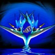 Blue Bird Of Paradise Art Print
