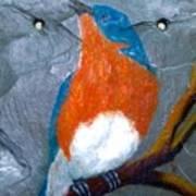 Blue Bird On Slate Art Print