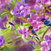 Blue Birds With Azalea Art Print
