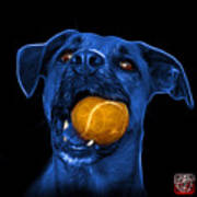 Blue Boxer Mix Dog Art - 8173 - Bb Art Print