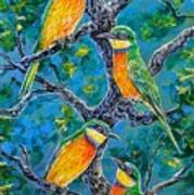 Blue Breasted Bee Eater Art Print