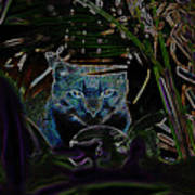 Blue Cat In The Garden Art Print