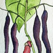 Blue Coco Beans Art Print
