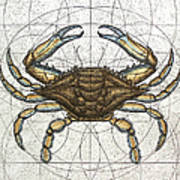 Blue Crab Art Print by Charles Harden