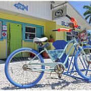Blue Dog Matlacha Island Florida Art Print