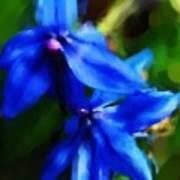 Blue Flower 10-30-09 Art Print
