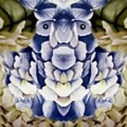 Blue Flower King Art Print