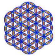 Blue Flower Of Life Art Print