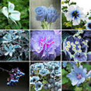 Blue Flowers All Art Print