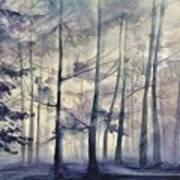 Blue Forest In Winter Art Print