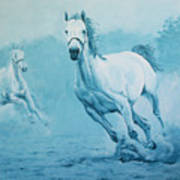 Blue Horses Art Print