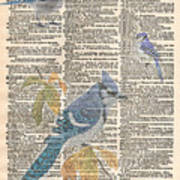 Blue Jay Expire Art Print