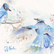 Blue Jays Art Print