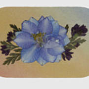 Blue Larkspur And Oregano Pressed Flower Arrangement Art Print