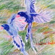 Blue Magpies Art Print