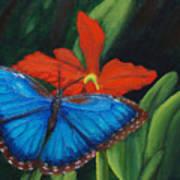 Blue Morph  Art Print