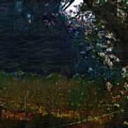 Blue Night In The Field Art Print