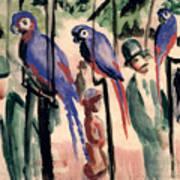 Blue Parrots Art Print