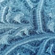 Extraordinary Hoarfrost Scallop Patterns In Blue Art Print