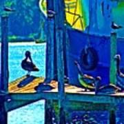 Blue Pelicans Art Print