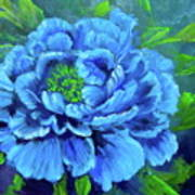 Blue Peony Jenny Lee Discount Art Print