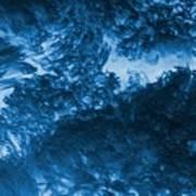 Blue Plants Art Print