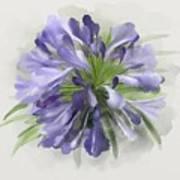 Blue Purple Flowers Art Print