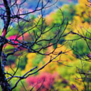 Blue Ridge Autumn Art Print
