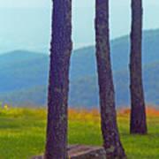 Blue Ridge Mountains Of Virginia Art Print