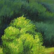 Blue Ridge Sentinel Art Print