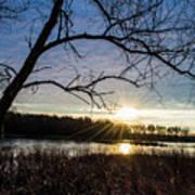 Blue Sky Sunrise On The Marsh Art Print