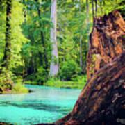 Blue Springs Art Print