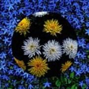 Blue Star Universe Art Print