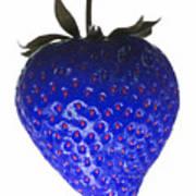 Blue Strawberry Art Print