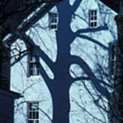 Blue Tree House Art Print