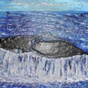 Blue Whale 1 Art Print