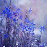Bluebell Heaven Art Print by Priska Wettstein