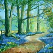 Bluebell Walk Art Print