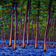Bluebell Wood Art Print by Johnathan Harris